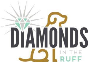 DITR 2018 Final Logo
